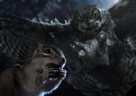 Hidden Kingdoms - Im Königreich der kleinen Tiere